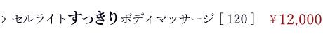 ボディコース/はじめての方限定メニュー/セルライドすっきりボディマッサージ[120分]\12,000